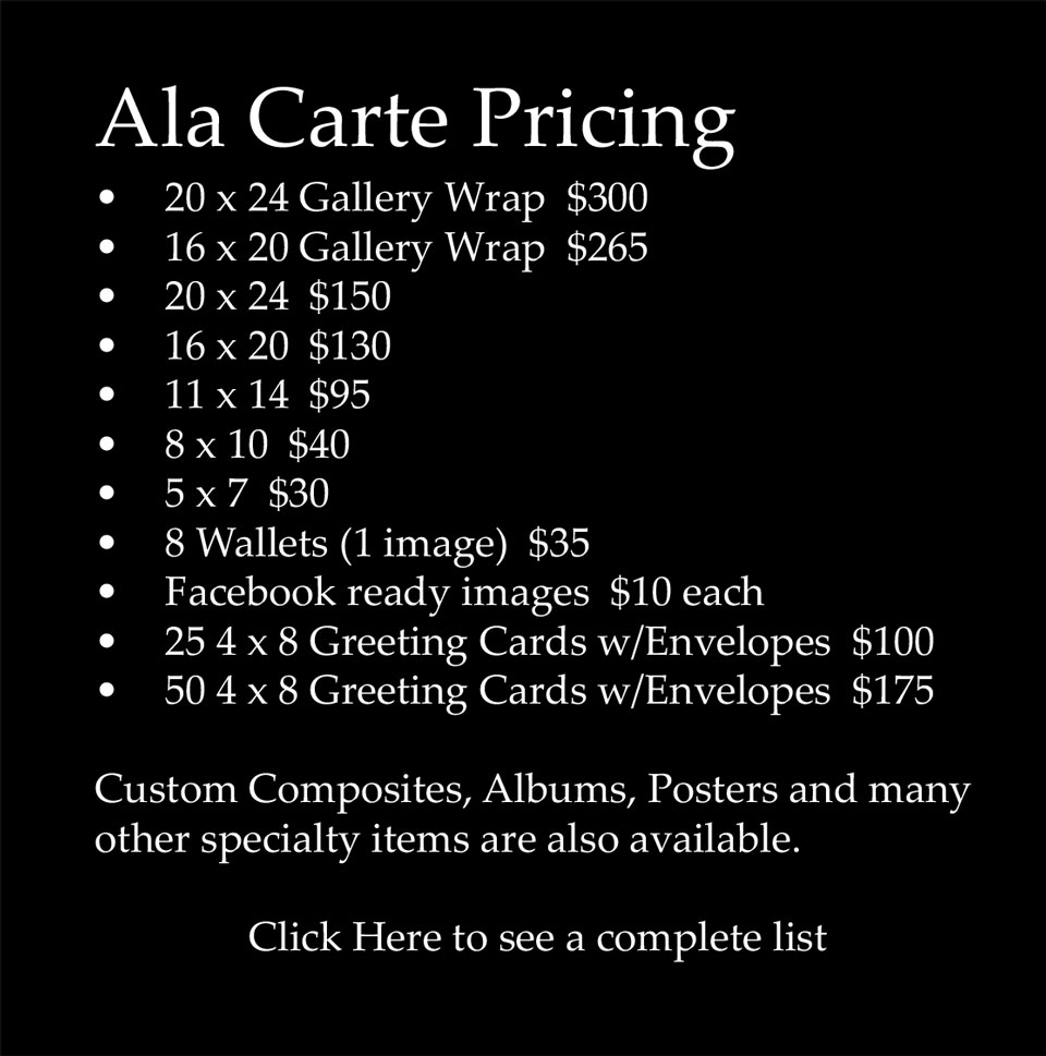 Portrait Pricing: Senior Portrait Photography Package Pricing